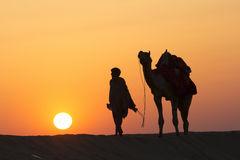 desert-local-walks-camel-thar-desert-lead-nose-dramatic-sun-background-39186172-1